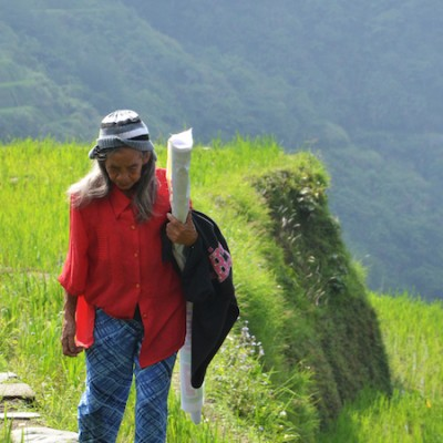 a local woman walking by the rice terraces