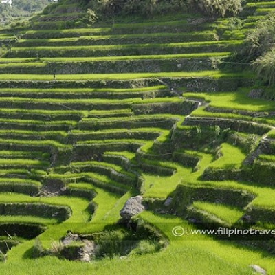 famous Banaue rice terraces