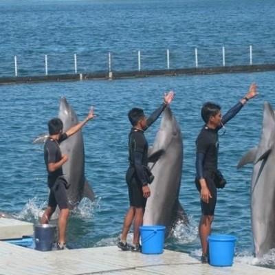 ocean adventure Subic