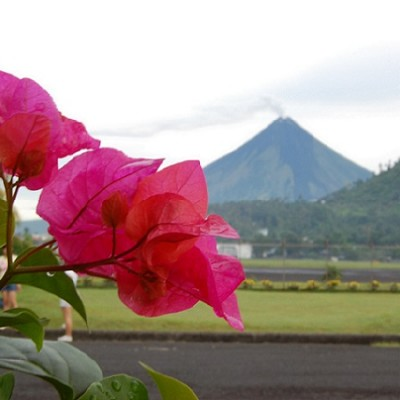 Mt Mayon in 2008 from Legaspi airport