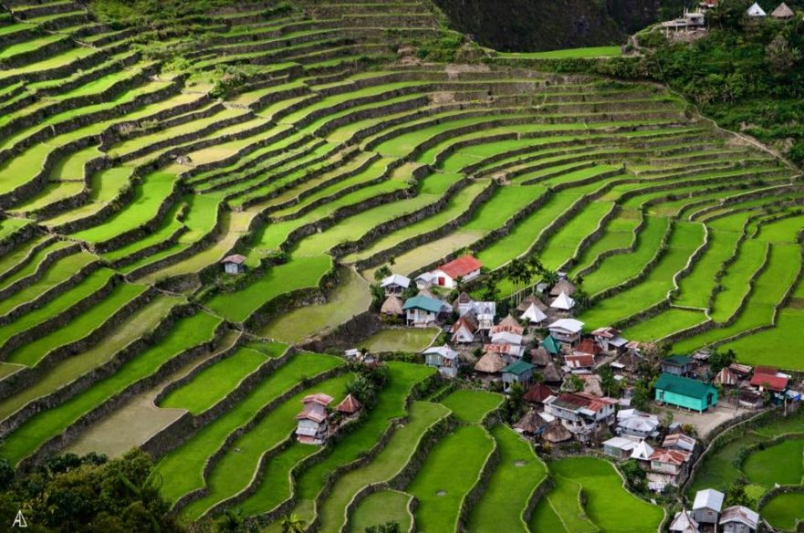 Car rental for Banaue and Sagada Rice terraces