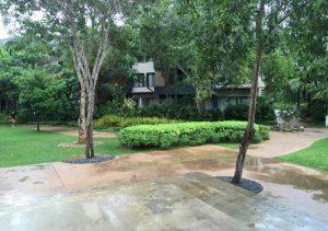 Amorita Garden Area