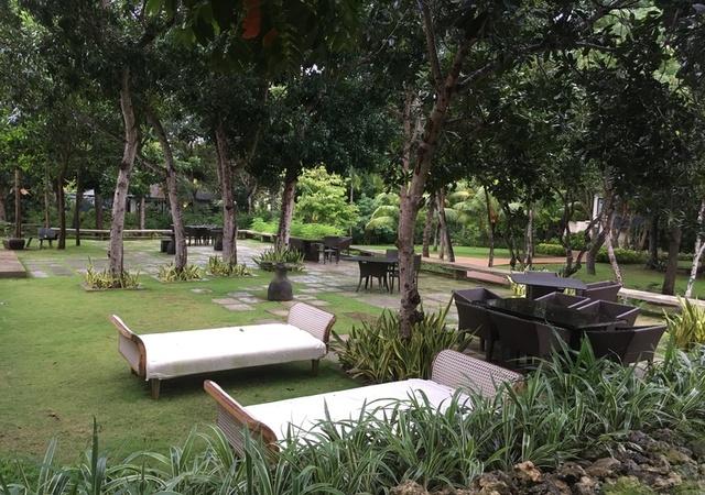 Amorita Garden