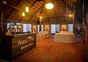 Acacia Tree Graden Hotel Palawan Reception Area