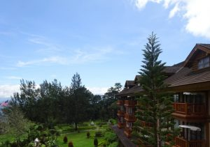Camp john hay the manor forest view