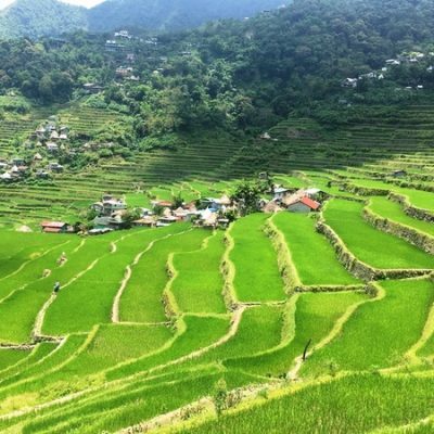 Bangaan Rice Terraces Tribe Local Village