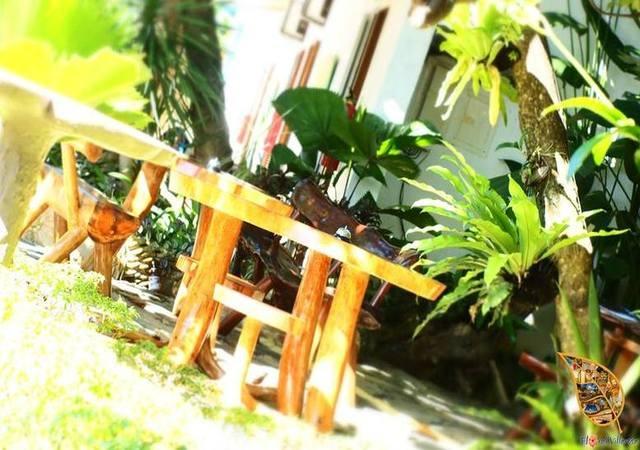 Floral Villarosa Palawan Green Garden
