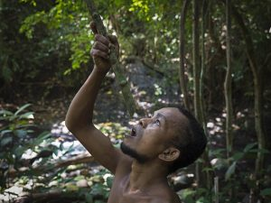 Man drinking from bamboo Jungle tour_Philippines