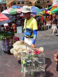 Market Tour 3